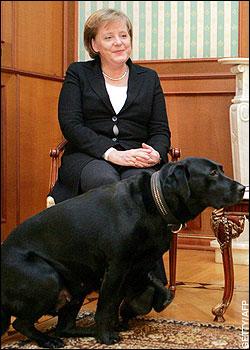 Putin Merkel Hund